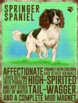 Metal Wall Kitchen Sign Vintage Style Retro Springer Spaniel Dog Lovers Gift